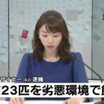 堀口妙子の顔画像とFACEBOOK特定!!猫23匹糞尿まみれ!不衛生で逮捕!