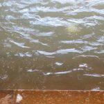 温泉、濁り湯には知られざる秘密が・・・・('_')